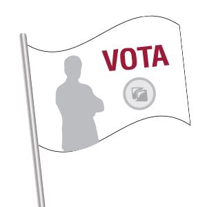 Bandiere Elettorali da € 25